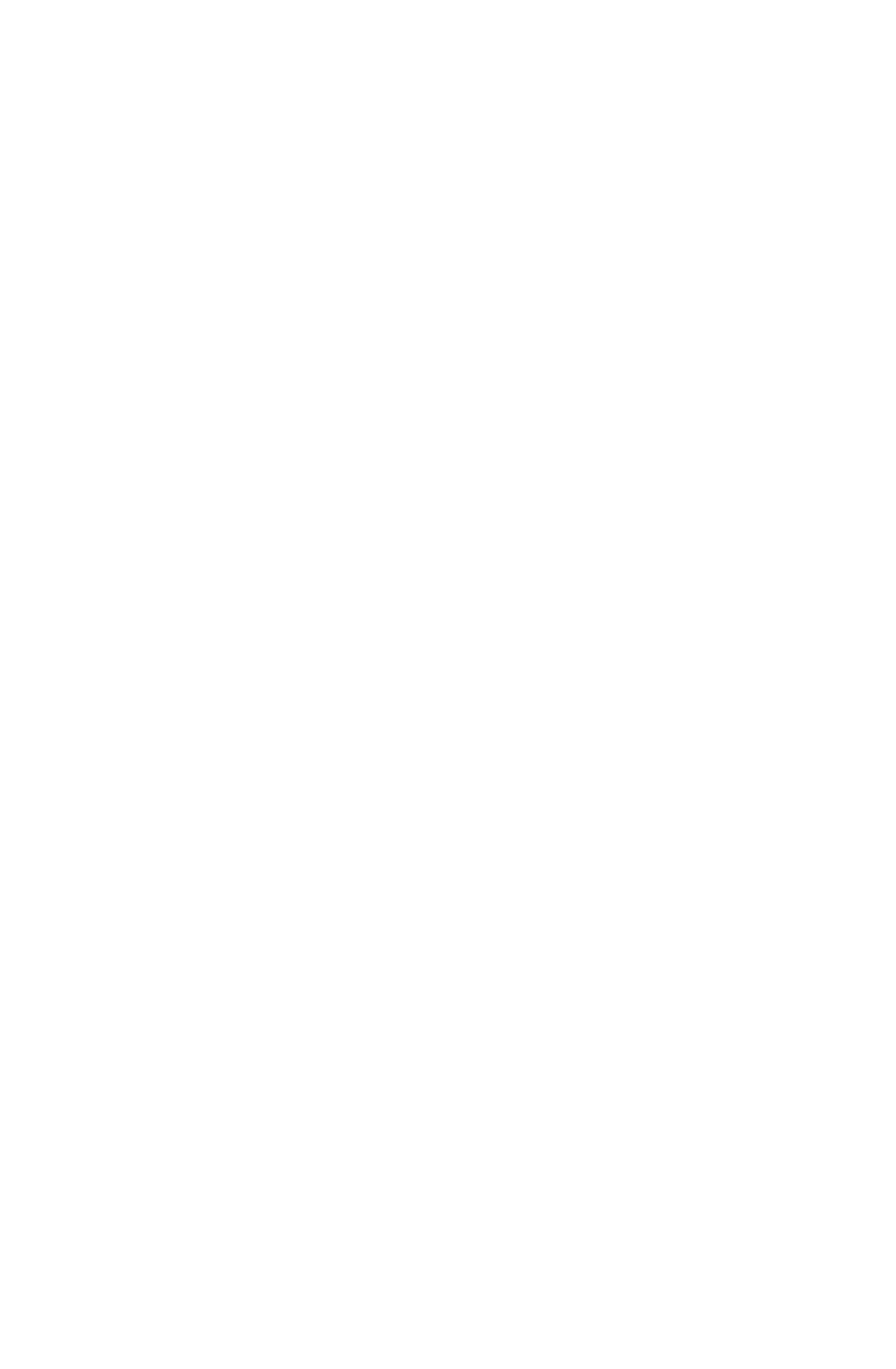 Chyz Logo Blanc